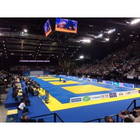 Tapis de judo - IFJ / FFJDA