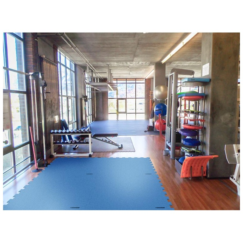 Dalle Fitness SPORTEC® Motionflex